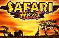 Safari Heat в Вулкане Удачи