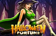 Играть в автомат Хеллоуин в игровом зале Вулкан