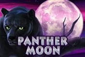 Panther Moon - играйте на доллары