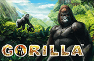 Gorilla в мобильной версии казино Вулкан